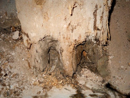 Evidence of damp and wet rot at The Guildhall, Derry, Northern Ireland: note the crumbling timbers