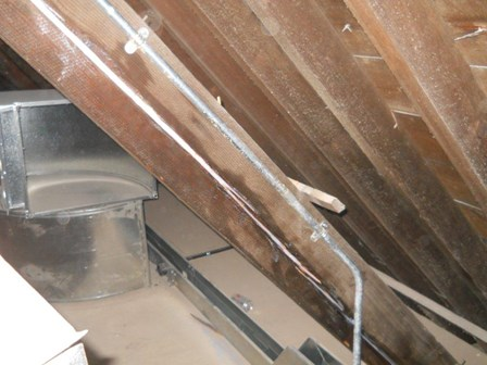 Shakes in trusses repaired using a resin injection method at The Guildhall, Derry, Northern Ireland